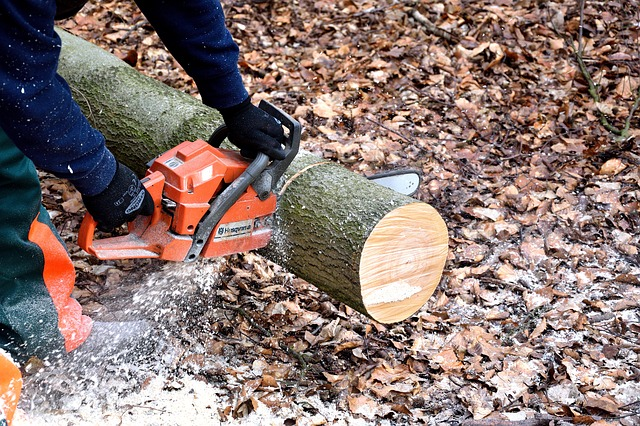 Manual Sharpening of Chainsaws